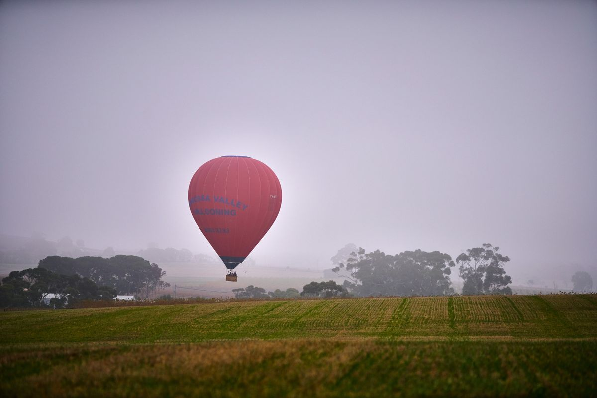 Hot air balloon barossa