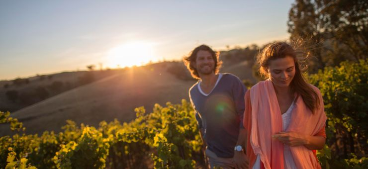 Your Ultimate Guide to the Barossa Valley