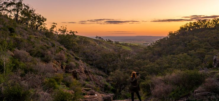 national parks near Clare Valley
